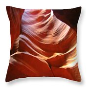 Undulating Pelvis Throw Pillow