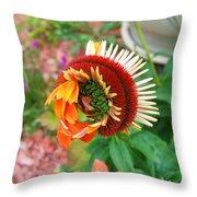 Unfolding Coneflower Throw Pillow