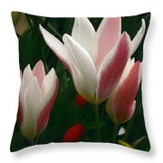 Unfolding Tulips Throw Pillow