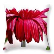 Unfurl Throw Pillow