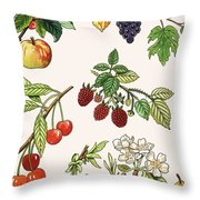 Unidentified Montage Of Fruit Throw Pillow