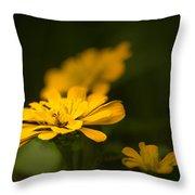 Unidentified Yellow Flower Throw Pillow