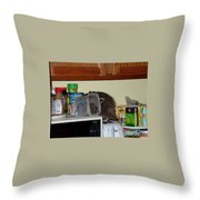 Uninvited Guest Throw Pillow