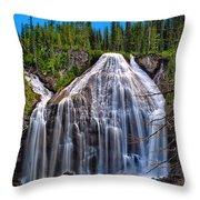Union Falls Throw Pillow