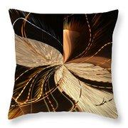 Universe Orbits Throw Pillow