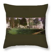University Of South Carolina Horseshoe 1984 Throw Pillow