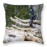 Unloading Firewood 4 Throw Pillow
