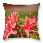 Unmarred Throw Pillow