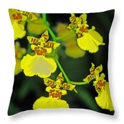 unnamed hybrid Orchid  Throw Pillow