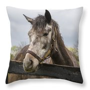Unrivaled Honor Throw Pillow