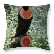 Unspoken Tales Throw Pillow