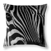 Untilted Throw Pillow