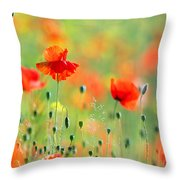 Untited Colours Of Summer  Throw Pillow