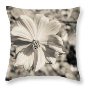 Untitled 8514 Throw Pillow