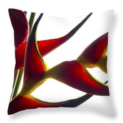 Untitled Floral 2 Throw Pillow