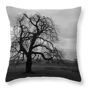 Winters Gloom Throw Pillow