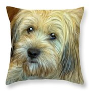 Chewy Throw Pillow