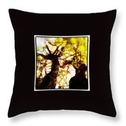 Untitled-twin Trees Throw Pillow