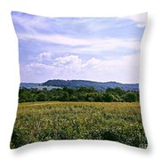 Untouched Iowa Throw Pillow