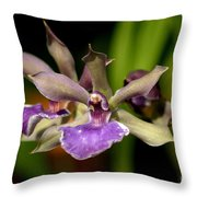 Unusual Orchid Throw Pillow
