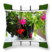 Unusual Simultaneous Bloomers 5 Throw Pillow
