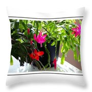Unusual Simultaneous Bloomers 6 Throw Pillow