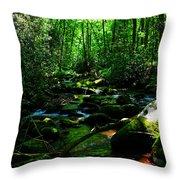 Up A Little River Throw Pillow