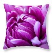 Up-close Flower Power Pink Mum  Throw Pillow
