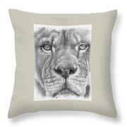 Up Close Lion Throw Pillow