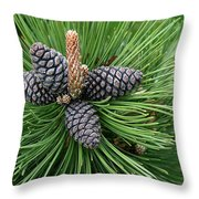 Up Cone Throw Pillow