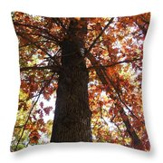 Up Fall Throw Pillow