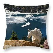 Up From The Lake Throw Pillow