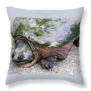 Up From The Pond Throw Pillow