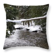 Up In Michigan Throw Pillow