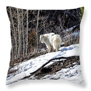 Up On The Mountain Top Throw Pillow