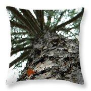 Up Pine Throw Pillow