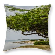 Up The Coast Throw Pillow