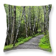 Up The Trail Throw Pillow