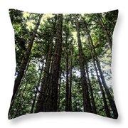Up Through The Trees Throw Pillow