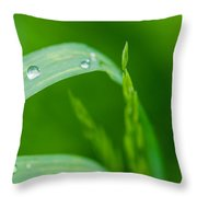 Up To The Sun - Featured 3 Throw Pillow