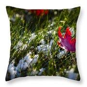 Upcoming Winter Throw Pillow