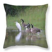Upon The Misty Waters Throw Pillow