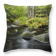 Upper Bear River In Early Autumn Nova Throw Pillow