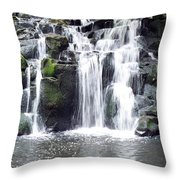 Upper Beaver Falls Throw Pillow
