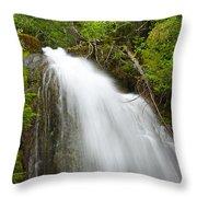 Upper Cougar Falls Throw Pillow