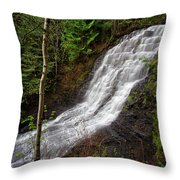 Upper Little Falls Throw Pillow