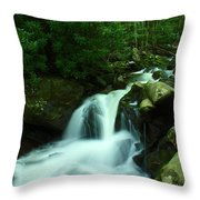 Upper Lynn Camp Prong Cascades Throw Pillow