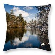 Upper Pond 2 Throw Pillow