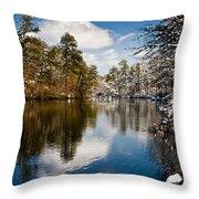 Upper Pond Throw Pillow