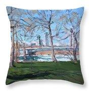 Upper Rapids Of Niagara Falls Ny Throw Pillow
